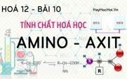 Amino Axit tính chất hoá học, công thức cấu tạo và bài tập về Amino Axit - hoá 12 bài 10
